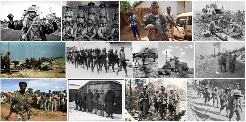 The World Wars in Africa
